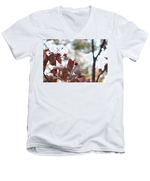 After Rain 2 Men's V-Neck T-Shirt