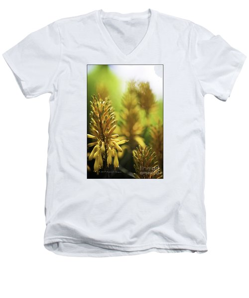 Aloe 'kujo' Plant Men's V-Neck T-Shirt