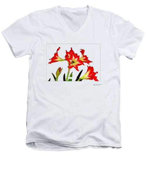 Men's V-Neck T-Shirt featuring the photograph Amaryllis On White by David Perry Lawrence