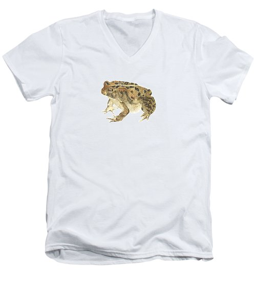 American Toad Men's V-Neck T-Shirt by Cindy Hitchcock