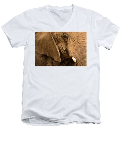 An Elephant's Eye Men's V-Neck T-Shirt