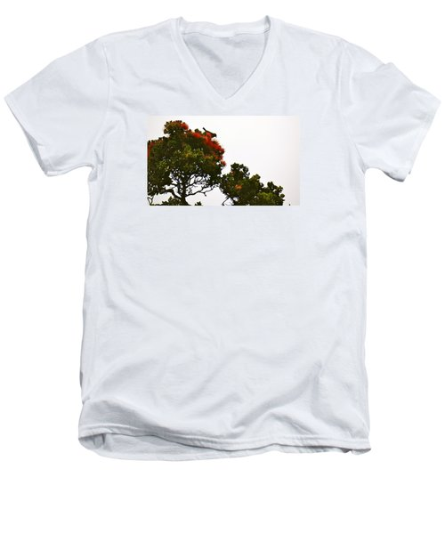 Apapane Atop An Orange Ohia Lehua Tree  Men's V-Neck T-Shirt by Lehua Pekelo-Stearns