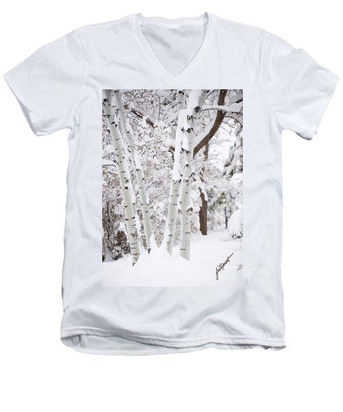 Aspen Snow Men's V-Neck T-Shirt