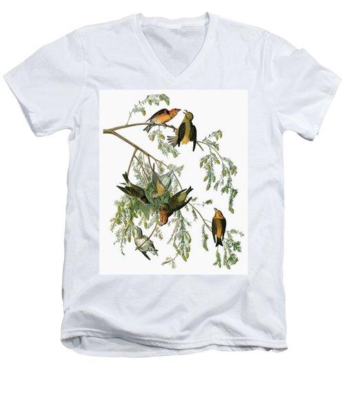Audubon Crossbill Men's V-Neck T-Shirt