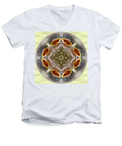 Baby Bird Kaleidoscope Men's V-Neck T-Shirt
