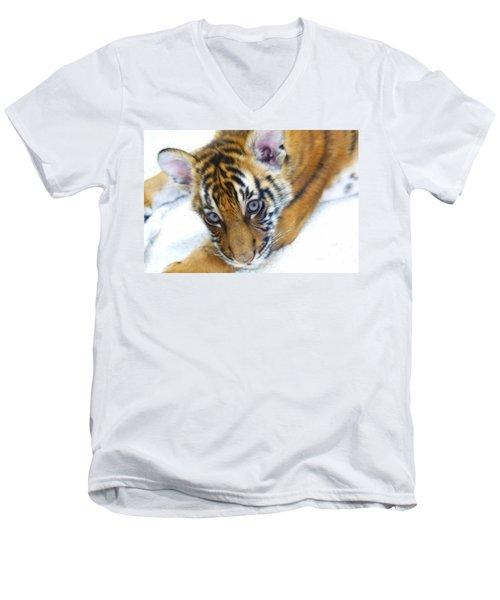 Baby Tiger Men's V-Neck T-Shirt by Steve McKinzie