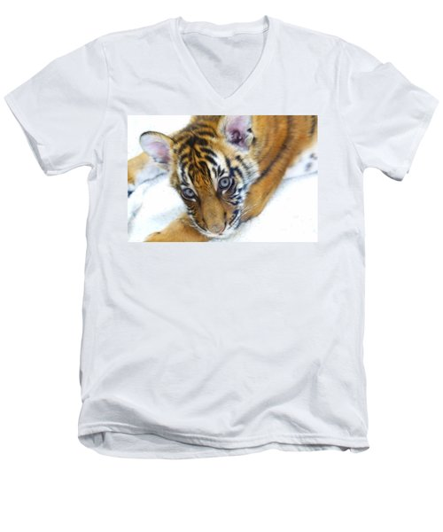 Baby Tiger Men's V-Neck T-Shirt