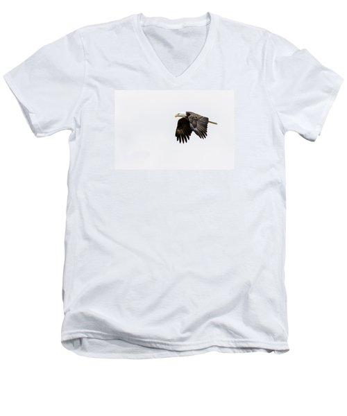 Bald Eagle 3 Men's V-Neck T-Shirt by David Lester