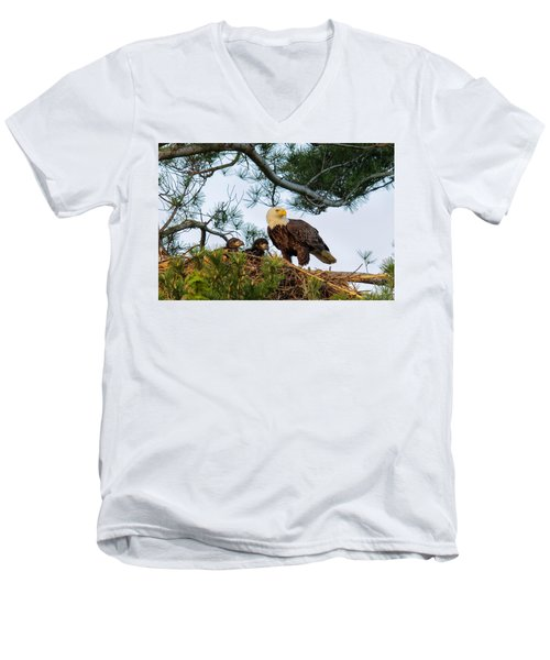 Bald Eagle With Eaglets  Men's V-Neck T-Shirt