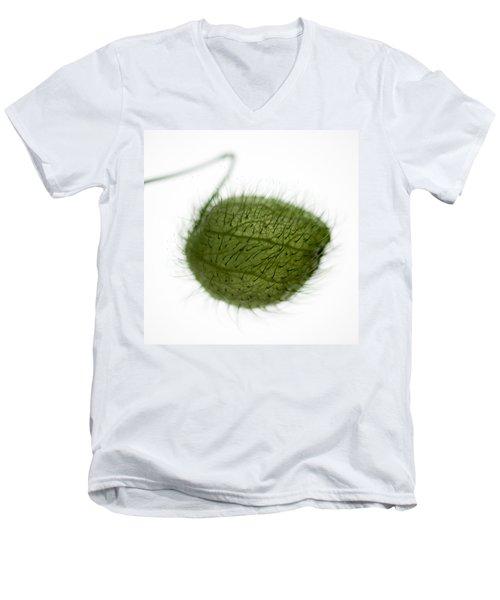 Balloon Plant Men's V-Neck T-Shirt