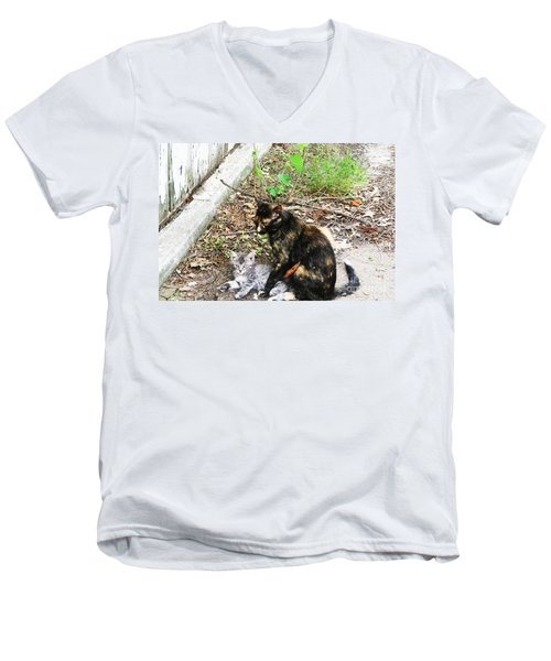 Barn Cats Men's V-Neck T-Shirt by PainterArtist FIN