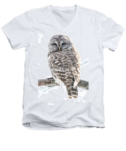 Barred Owl2 Men's V-Neck T-Shirt