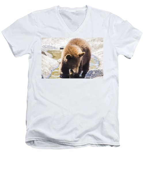 Bear Cub Men's V-Neck T-Shirt