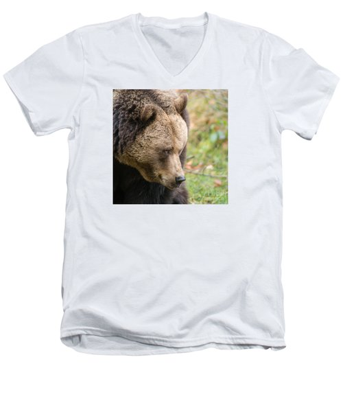 Bear's Profile Men's V-Neck T-Shirt