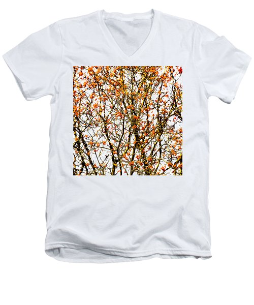Beautiful Rowan 10 - Square Men's V-Neck T-Shirt