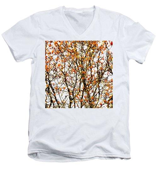 Beautiful Rowan 10 - Square Men's V-Neck T-Shirt