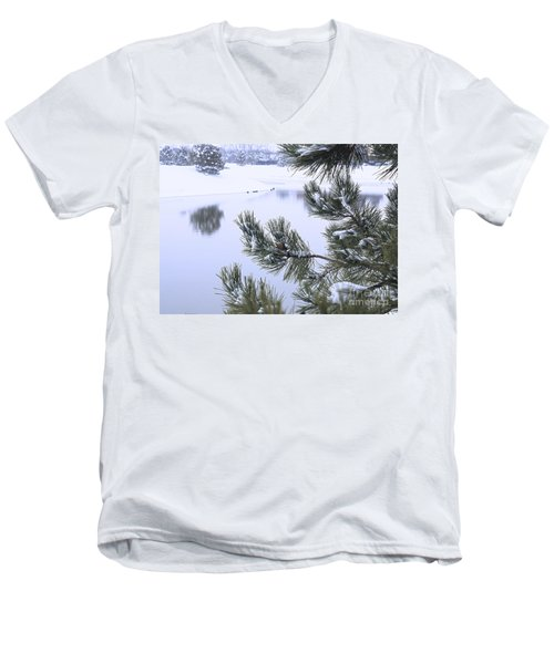 Beauty After The Storm Men's V-Neck T-Shirt