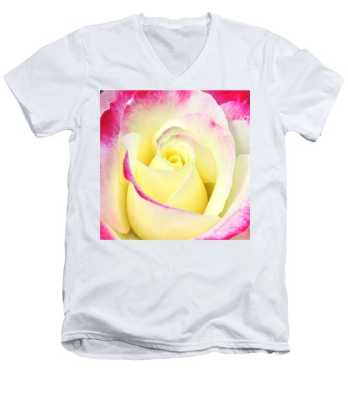 Beauty Unfurled Men's V-Neck T-Shirt