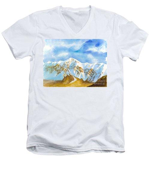 Ben Lomond Men's V-Neck T-Shirt