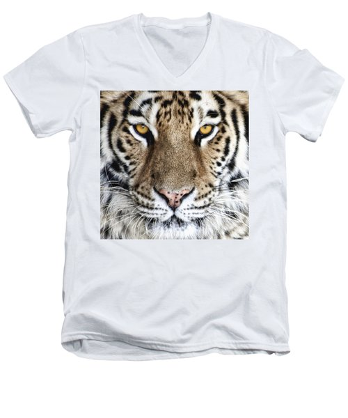 Bengal Tiger Eyes Men's V-Neck T-Shirt
