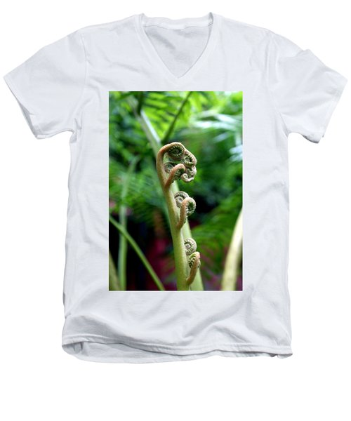Birth Of A Fern Men's V-Neck T-Shirt