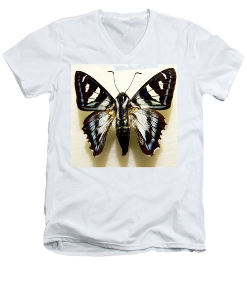 Men's V-Neck T-Shirt featuring the photograph Black And White Moth by Rosalie Scanlon