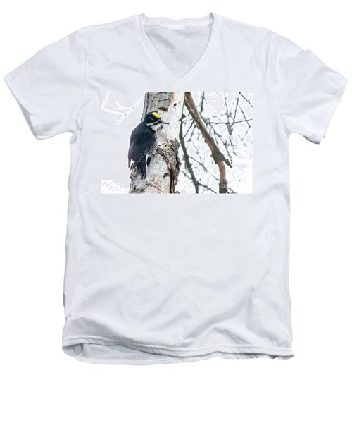 Black-backed Woodpecker Men's V-Neck T-Shirt