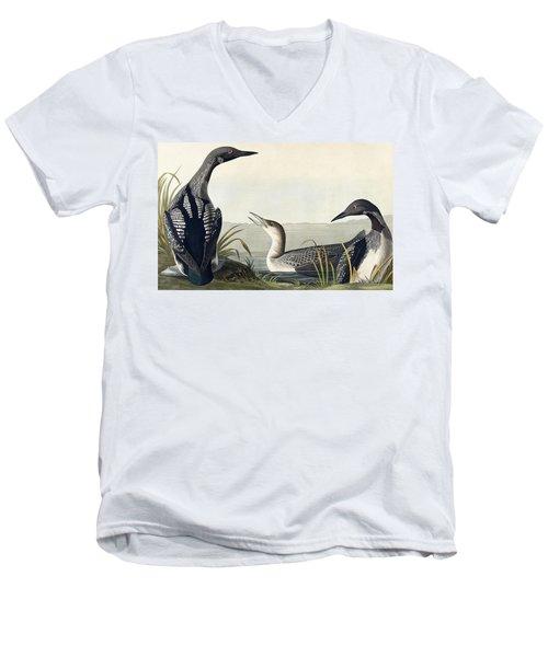 Black Throated Diver  Men's V-Neck T-Shirt by John James Audubon