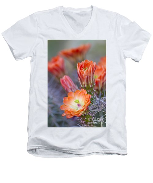 Men's V-Neck T-Shirt featuring the photograph Bloom In Orange by Bryan Keil