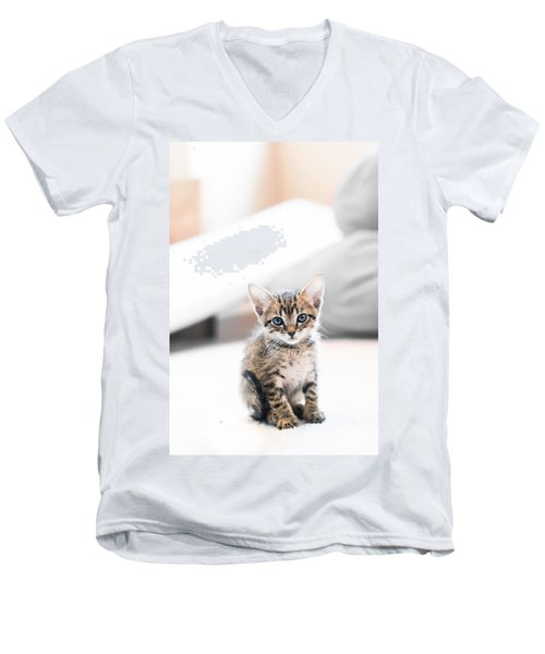 Blue Eyed Kitten Men's V-Neck T-Shirt by Shelby  Young