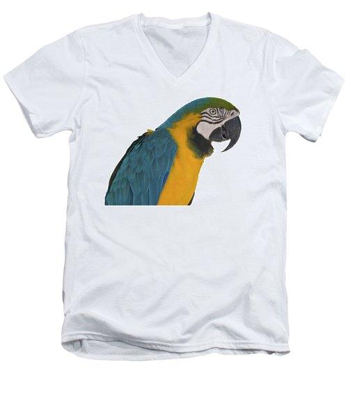 Blue Gold Macaw Men's V-Neck T-Shirt