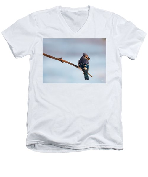 Blue Jay With Nuts Men's V-Neck T-Shirt