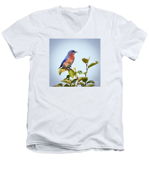 Men's V-Neck T-Shirt featuring the photograph Bluebird On Top by Kerri Farley