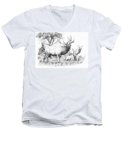Bull And Harem Men's V-Neck T-Shirt