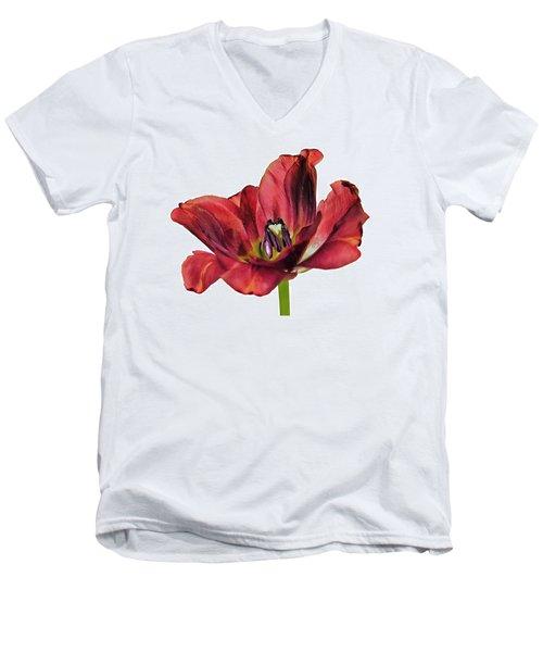 Burning Tulip Men's V-Neck T-Shirt