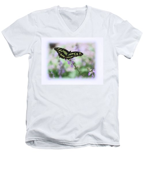 Men's V-Neck T-Shirt featuring the photograph Butterfly 8 by Leticia Latocki