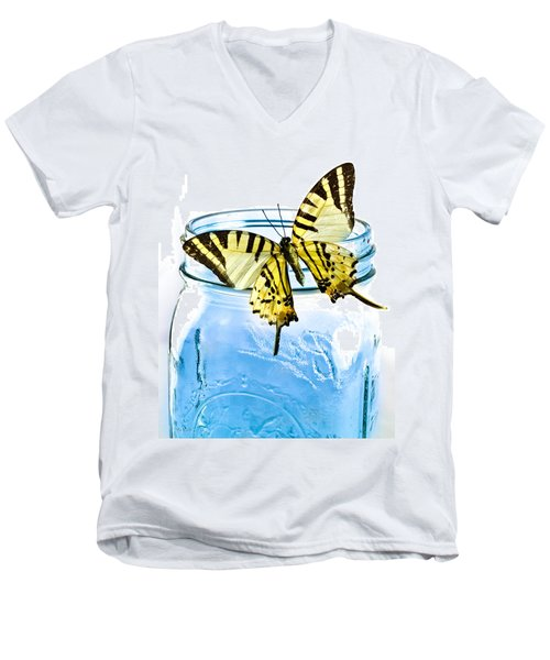 Butterfly On A Blue Jar Men's V-Neck T-Shirt