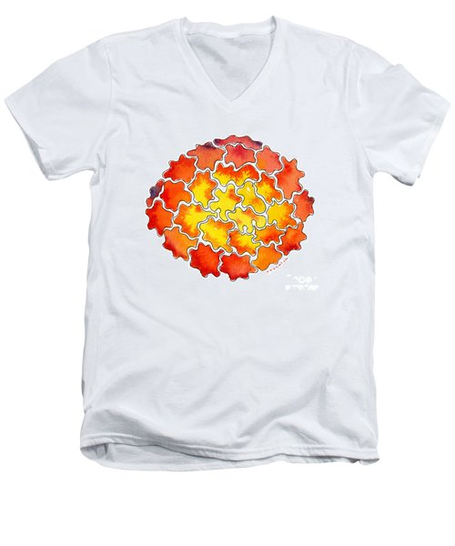 Caldera Men's V-Neck T-Shirt