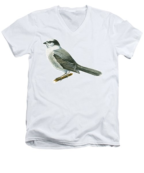 Canada Jay Men's V-Neck T-Shirt