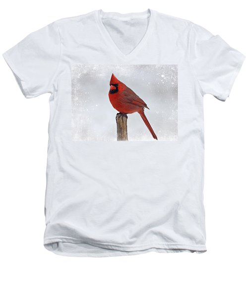 Cardinal Perching Men's V-Neck T-Shirt