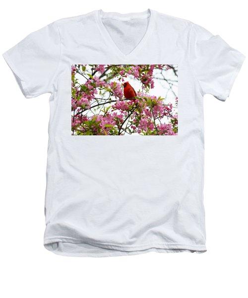 Cardinally Beautiful Men's V-Neck T-Shirt by Sonali Gangane