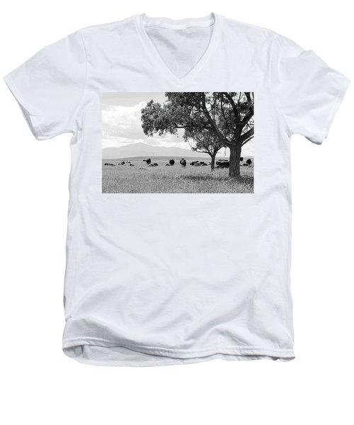 Cattle Ranch In Summer Men's V-Neck T-Shirt by Clarice  Lakota