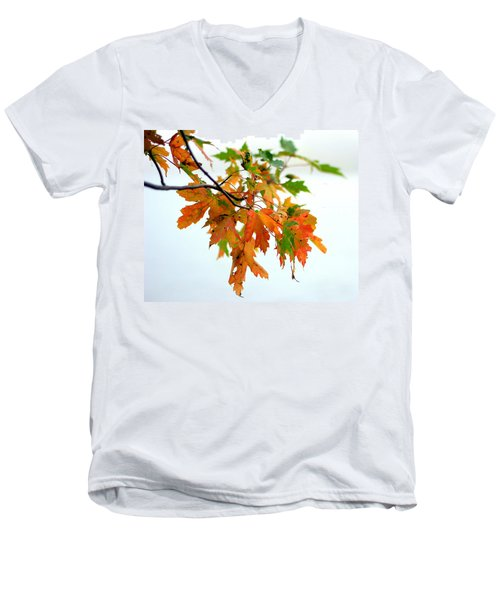 Changing Seasons Men's V-Neck T-Shirt