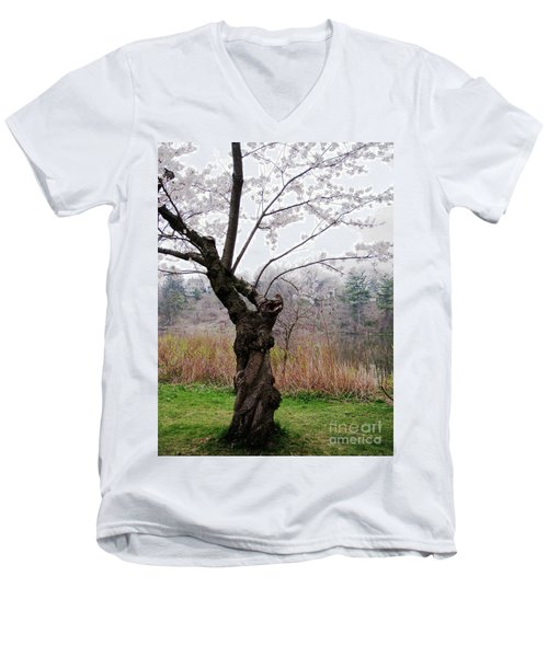 Cherry Blossom Time Men's V-Neck T-Shirt