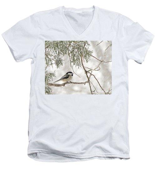 Chickadee In Snowstorm Men's V-Neck T-Shirt