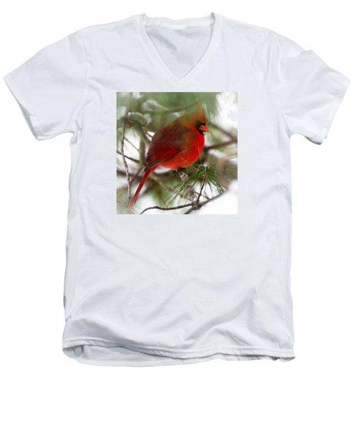 Men's V-Neck T-Shirt featuring the photograph Christmas Cardinal by Kerri Farley