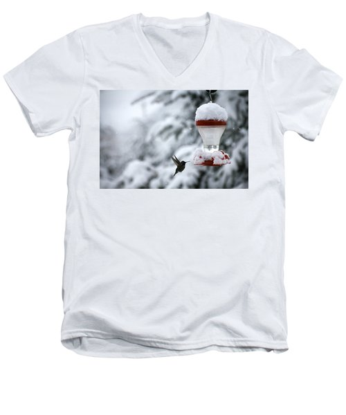 Christmas Hummingbird Men's V-Neck T-Shirt by Katie Wing Vigil