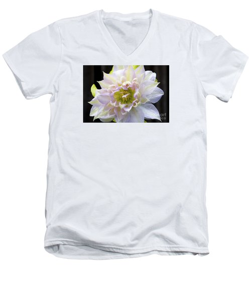Clematis 'belle Of Woking' Men's V-Neck T-Shirt