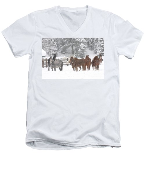 Cold Ponnies Men's V-Neck T-Shirt