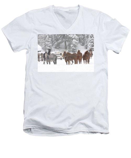 Cold Ponnies Men's V-Neck T-Shirt